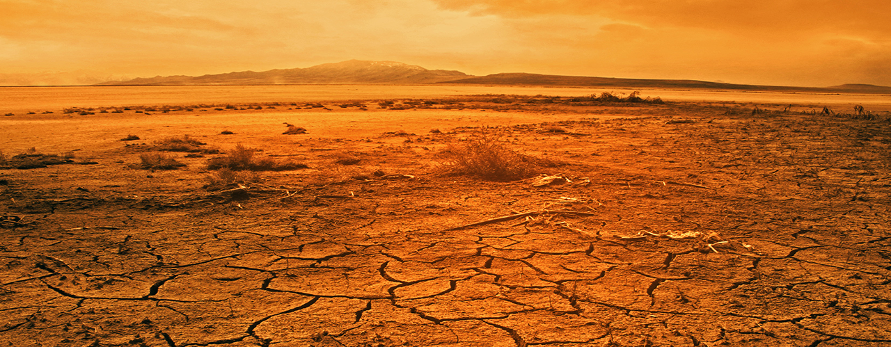 Finding God in the Desert