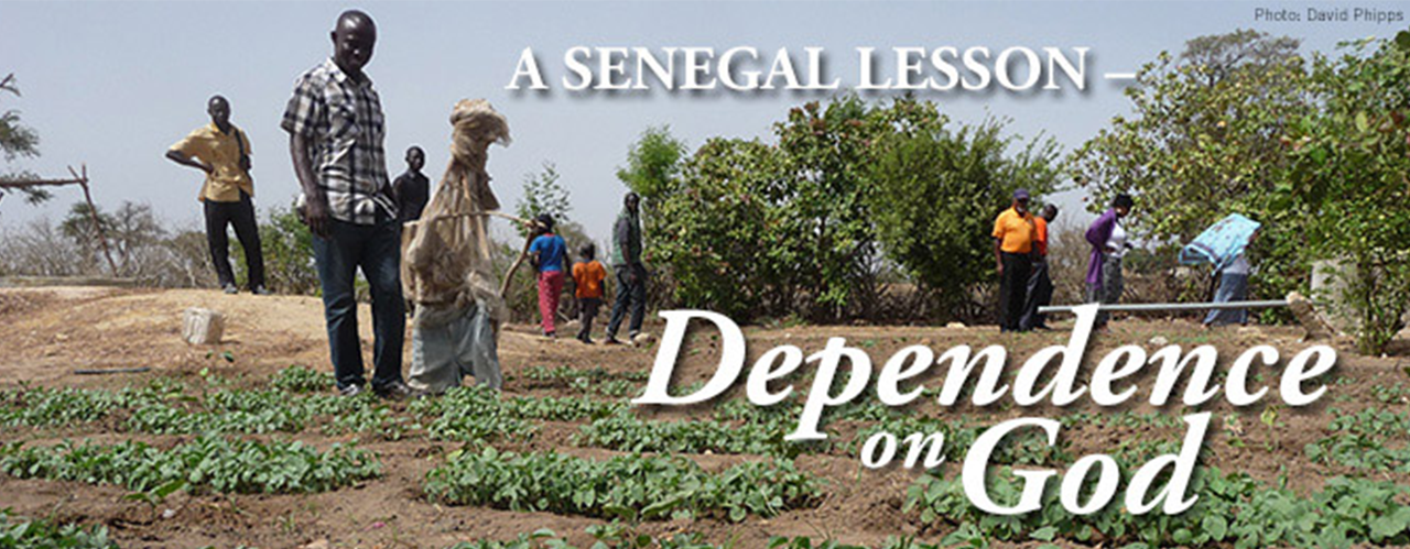 Senegal Mission Initiative