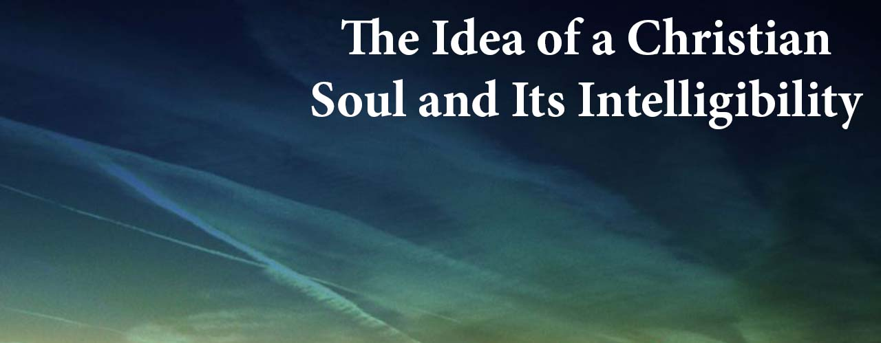 The Idea of a Christian Soul and Its Intelligibility