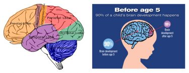 How to Encourage a Child's Brain Development