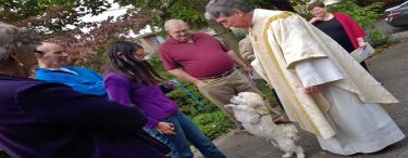 The Blessing of Animals