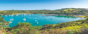 Waiheke Island: The Second-Largest Island in the Hauraki Gulf of New Zealand