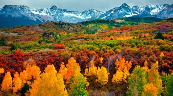 Take in the bright golds and oranges of fall as snow capped mountains provide a startling contrast at Ridgeway, Colorado. (Emily Davies-Robinson, 15 October 2015)
