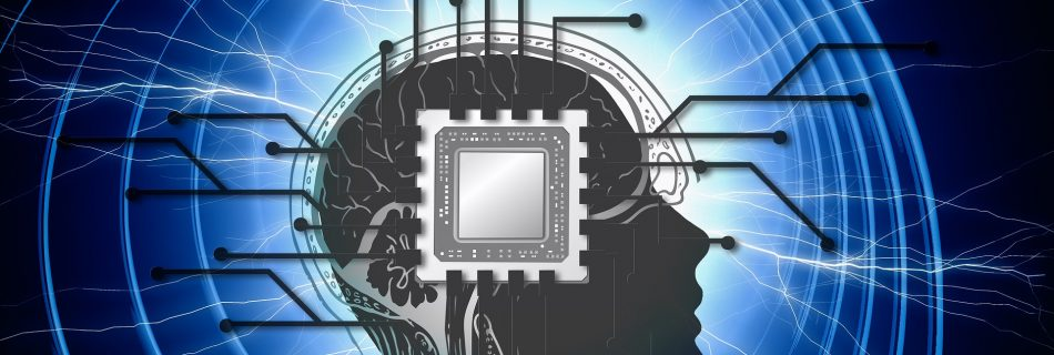 Is the Brain a Quantum Computer (Image by Gerd Altmann from Pixabay)